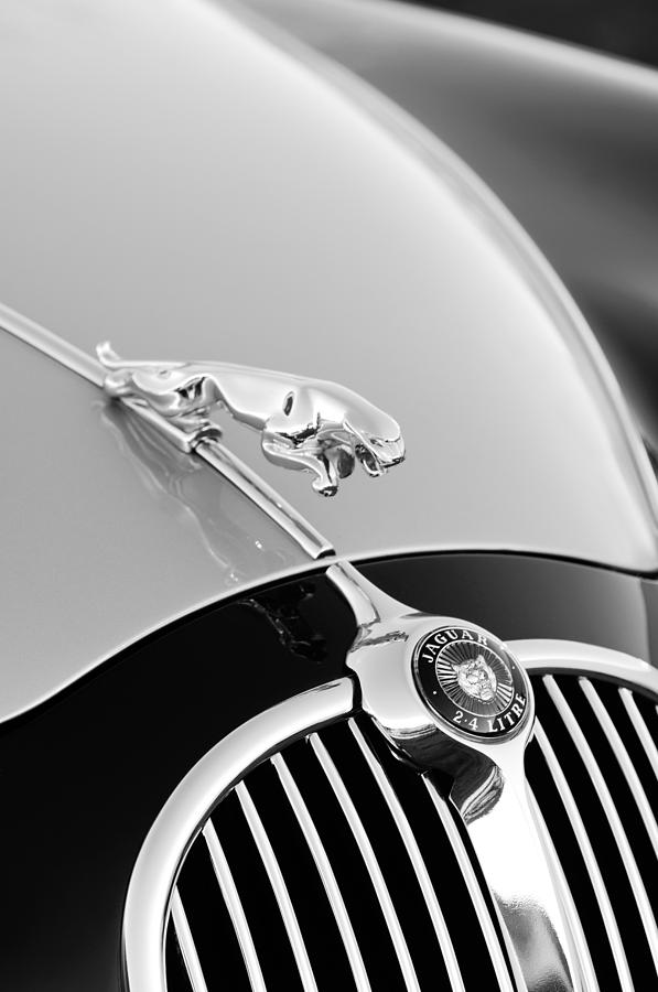 1000+ images about Classic Whips on Pinterest   Hood ornaments, Jaguar and Mg cars