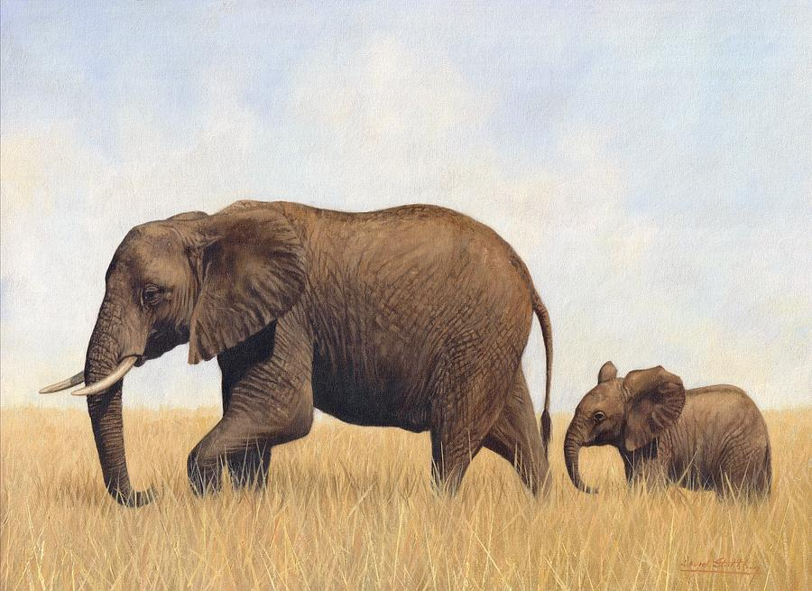 African Elephants Painting by David Stribbling