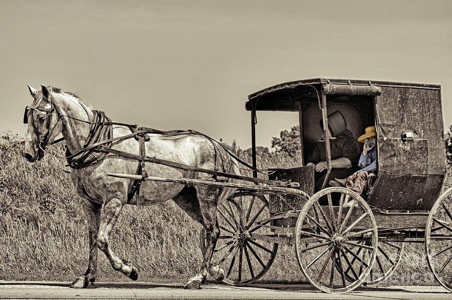 Amish Boy Tips Hat Photograph