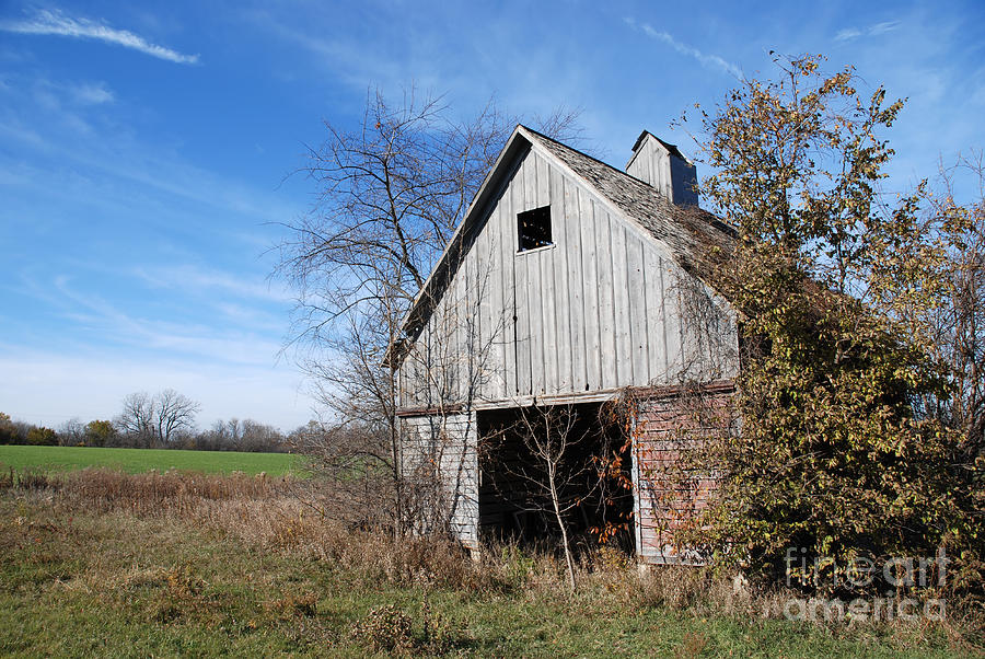 An Old Rundown Abandoned Wooden Barn Under A Blue Sky In Midwestern Illinois Usa Photograph  - An Old Rundown Abandoned Wooden Barn Under A Blue Sky In Midwestern Illinois Usa Fine Art Print
