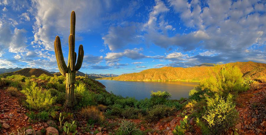 Apache Lake Hillside Morning Light Photograph