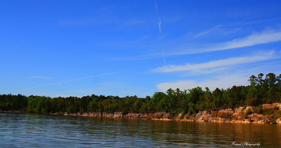Apalachicola River Photograph