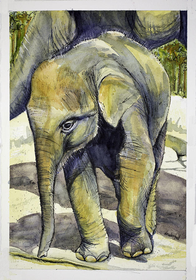 Asian Elephant Painting by Dave Whited