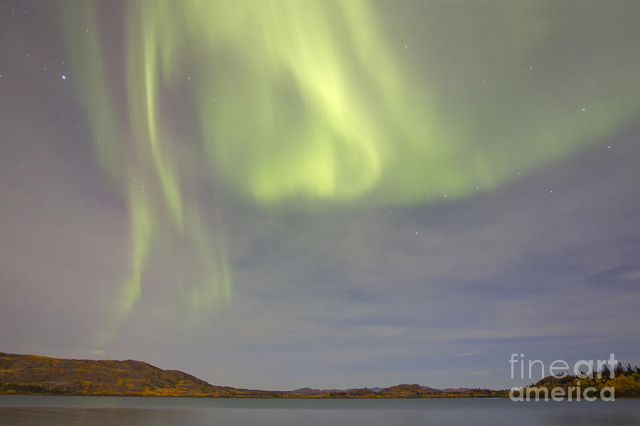 Aurora Borealis With Big Dipper Photograph  - Aurora Borealis With Big Dipper Fine Art Print
