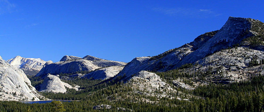 Beautiful Sierras Photograph