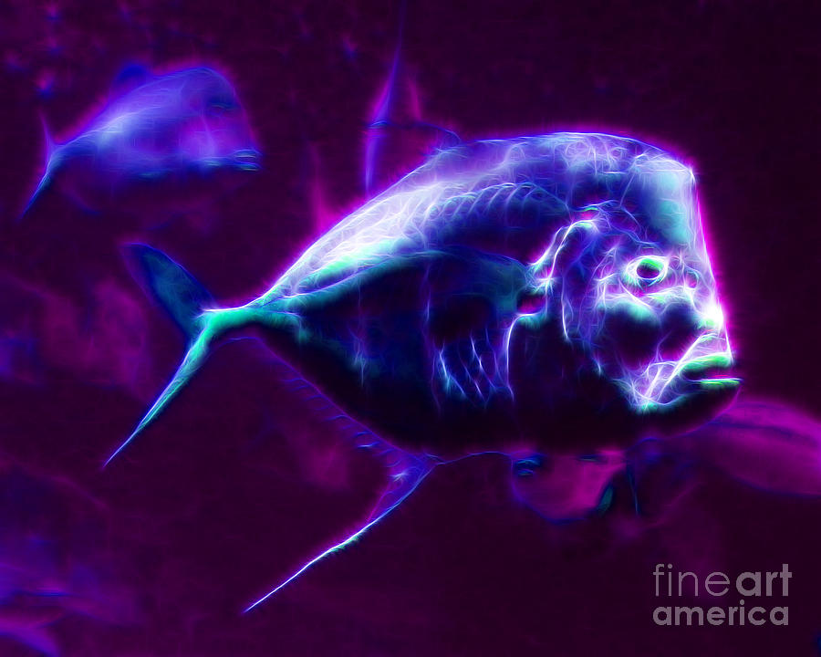 Big Fish Photograph - Big Fish Small Fish - Electric by Wingsdomain Art and Photography