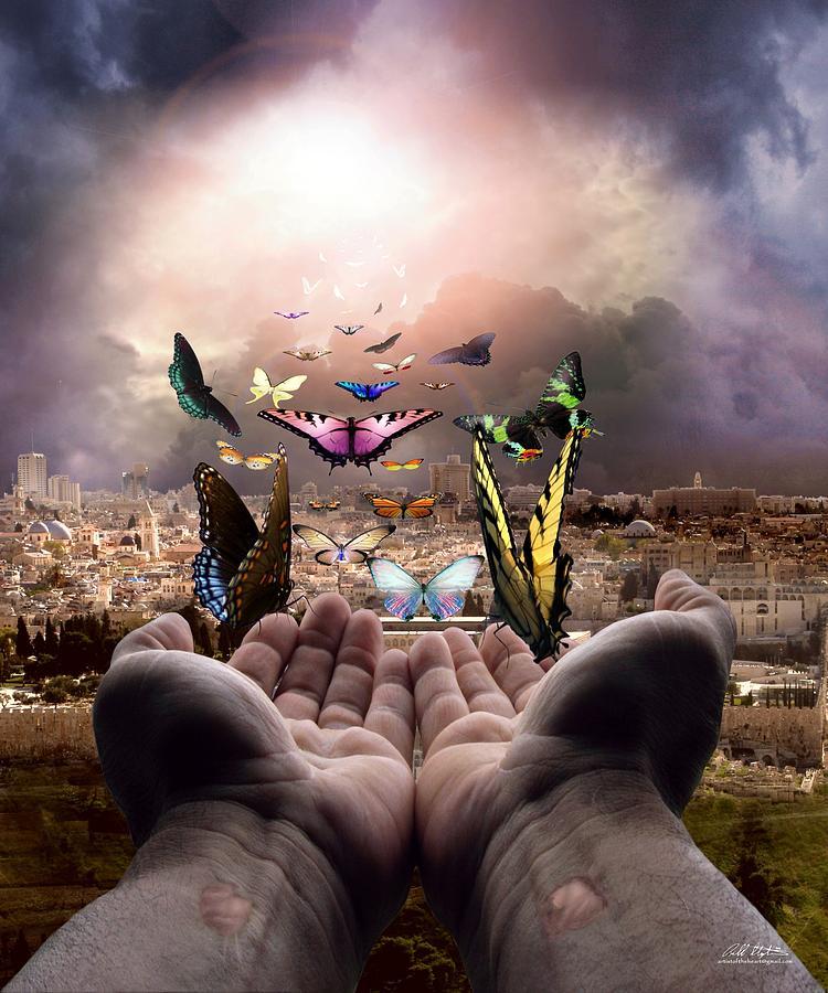 Born Again Israel Digi...