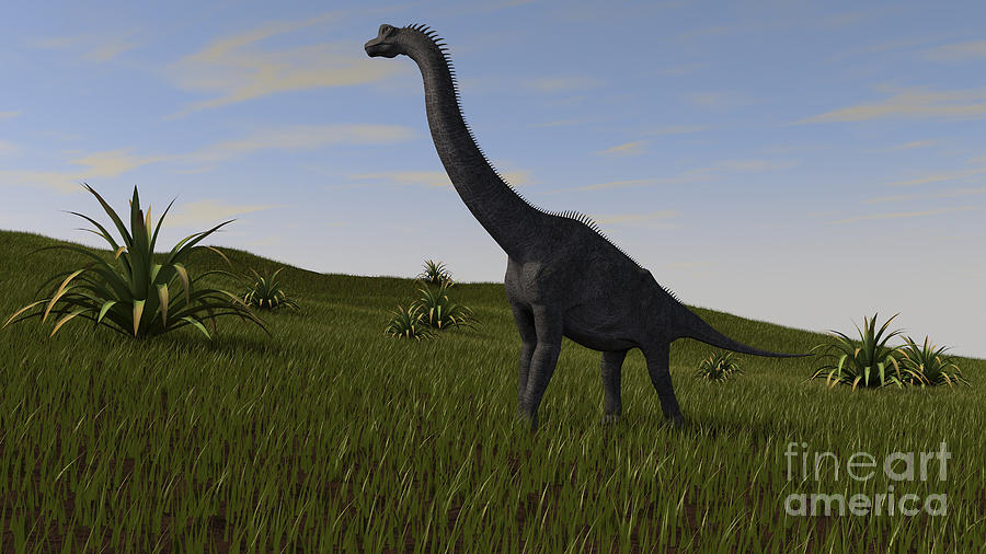 Brachiosaurus Grazing In A Grassy Field Digital Art