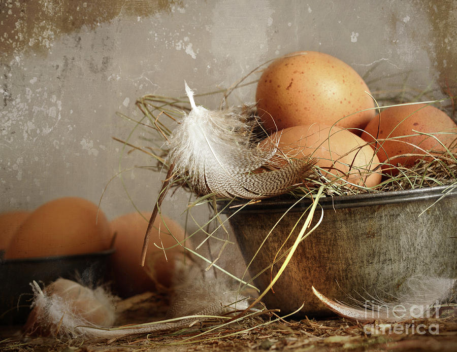 Background Photograph - Brown Speckled Eggs  In Old Tin Bowl by Sandra Cunningham