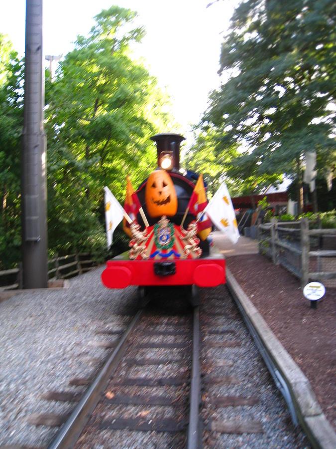 Busch Gardens - 121213 Photograph