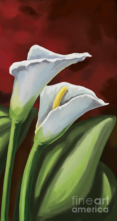 Calla Lilies Painting by Tim Gilliland