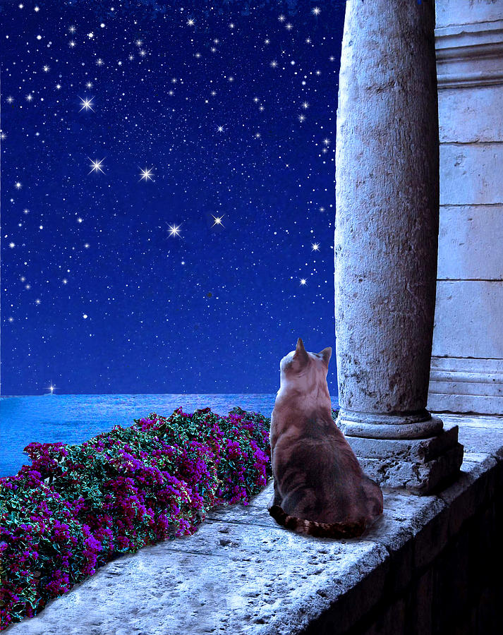 Constellations Digital Art - Cassiopeia by Kathleen Horner
