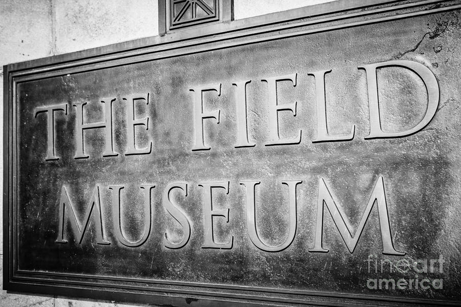 Chicago Field Museum Sign In Black And White Photograph  - Chicago Field Museum Sign In Black And White Fine Art Print