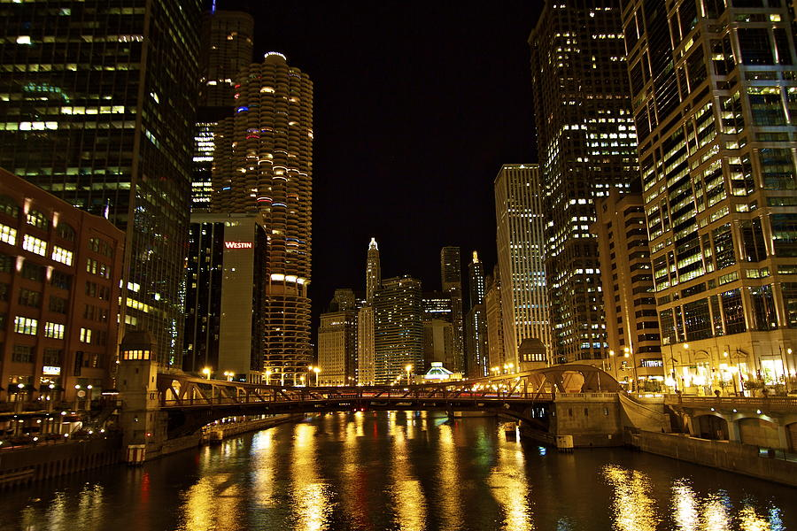 Chicago Nightscape Photograph  - Chicago Nightscape Fine Art Print