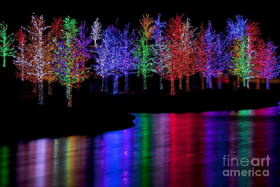 Christmas reflection photograph by anthony totah