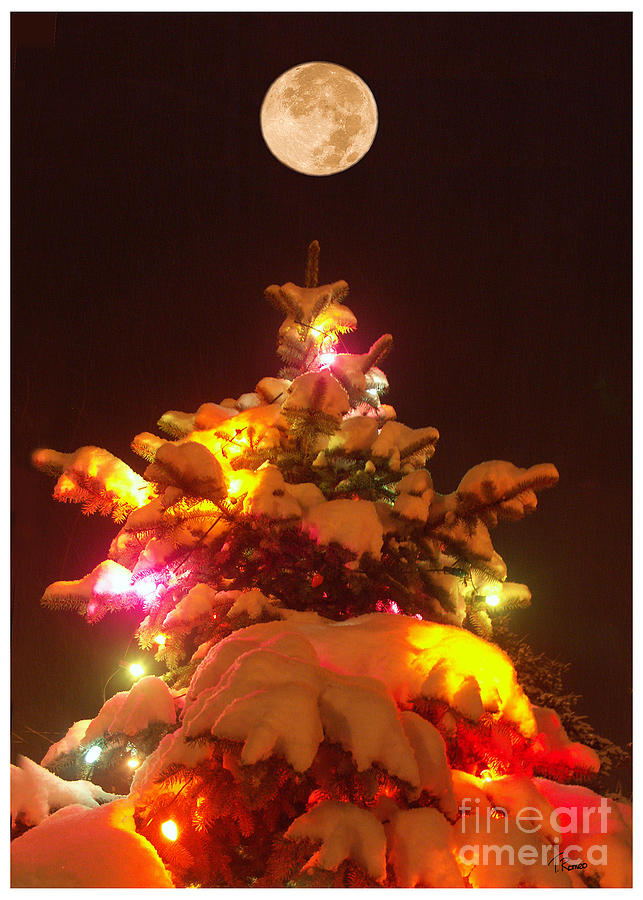 Christmas Tree Seneca Falls Digital Art