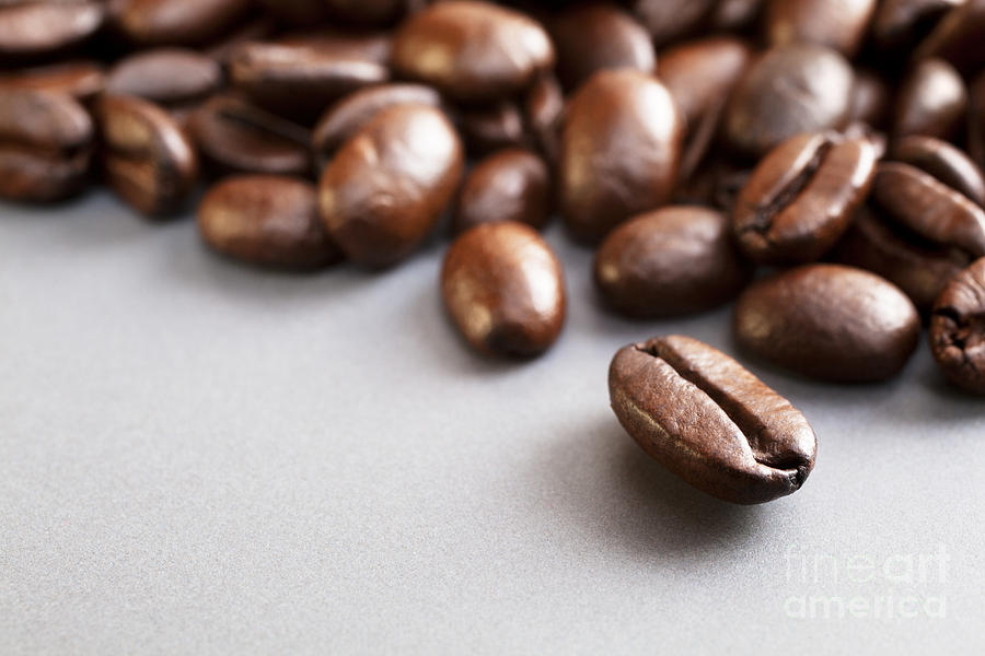 Coffee Beans On Grey Ceramic Surface Photograph  - Coffee Beans On Grey Ceramic Surface Fine Art Print