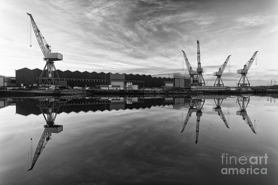 Cranes On The Clyde  Photograph