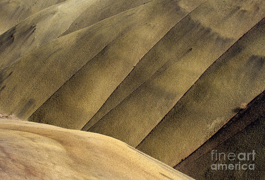 Painted Hills Photograph - Desert Lines by Mike  Dawson