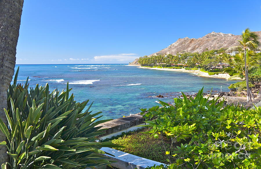 Diamond Head Photograph