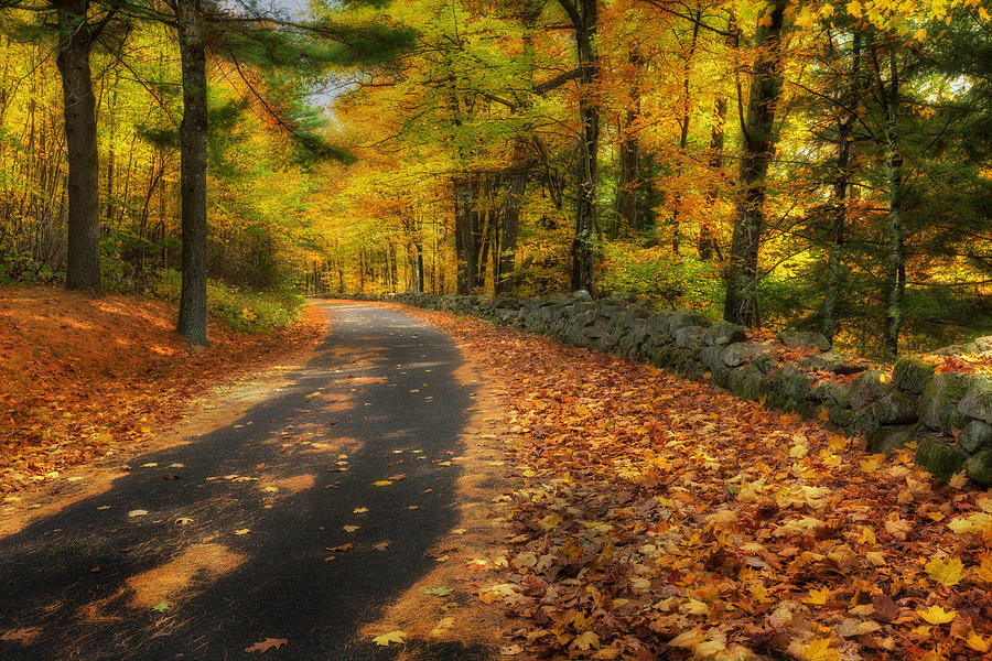 Down The Autumn Road Photograph  - Down The Autumn Road Fine Art Print