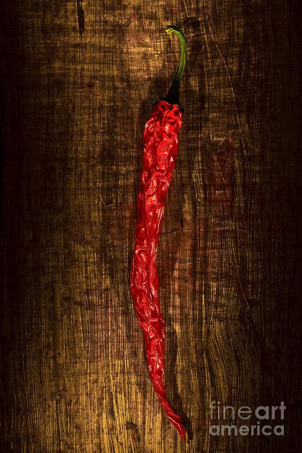 Dried Pepperoni Photograph  - Dried Pepperoni Fine Art Print