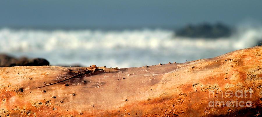 Storm Photograph - Drift Wood by Henrik Lehnerer