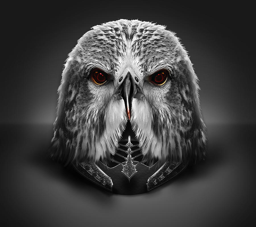 Eagle Helm Digital Art  - Eagle Helm Fine Art Print
