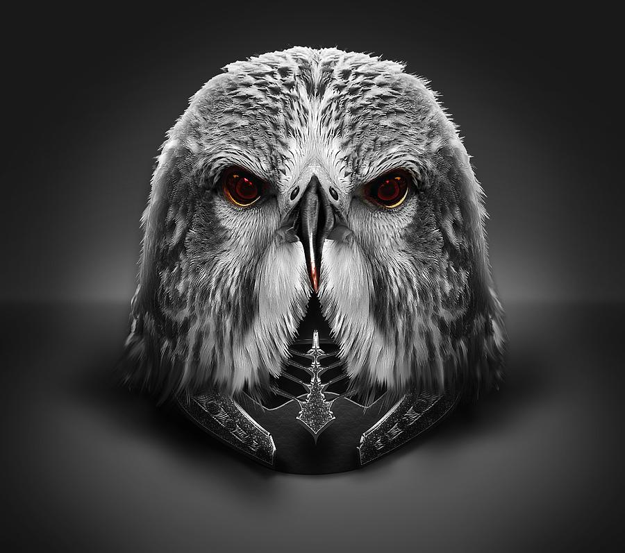 Eagle Helm Digital Art