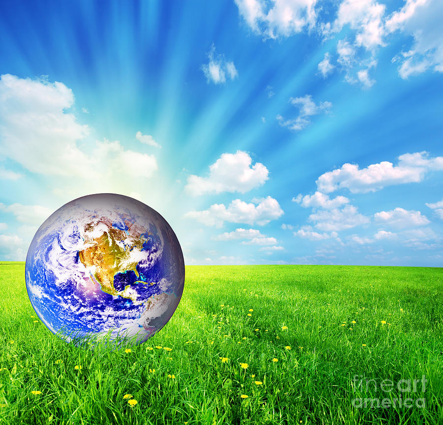Earth Globe On Green Grass Photograph