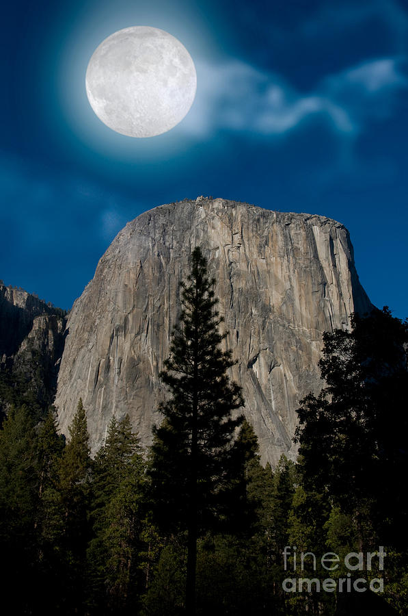 Yosemite Photograph - El Capitan, Yosemite Np by Mark Newman