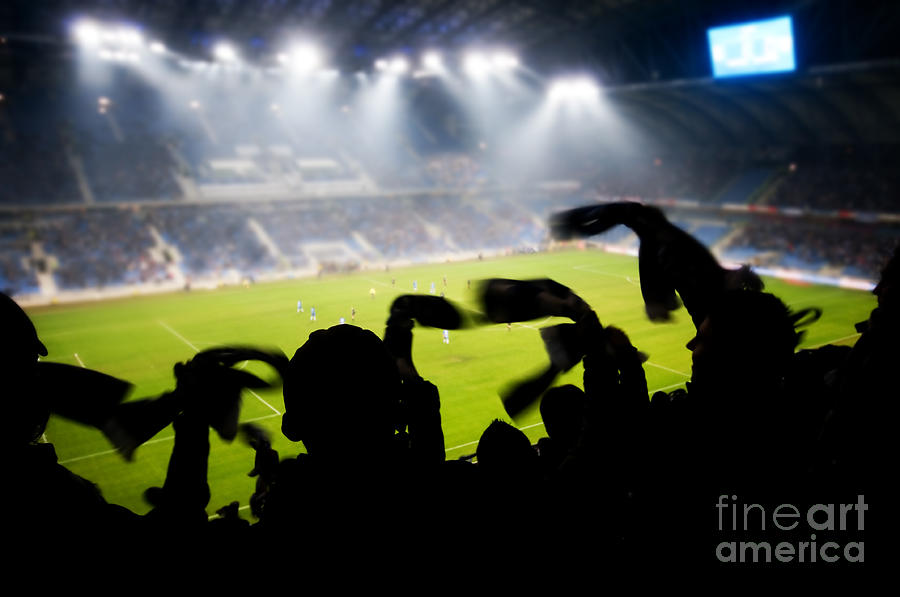 Fans Celebrating Goal Photograph  - Fans Celebrating Goal Fine Art Print