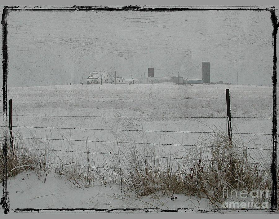 Farmstead Photograph