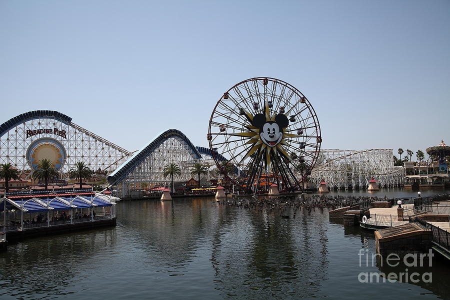 Ferris Wheel And Roller Coaster - Paradise Pier - Disney California Adventure - Anaheim California - Photograph