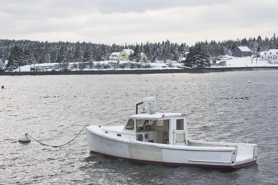 Fishing Boat After Snowstorm In Port Clyde Harbor Maine Photograph