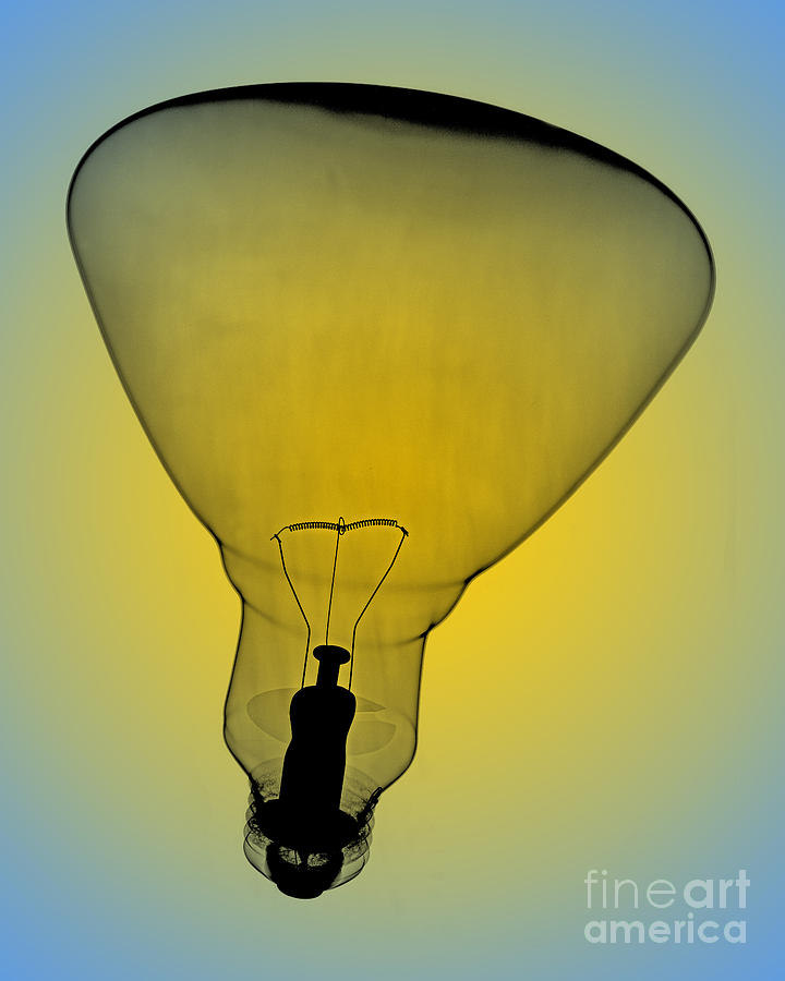 Flood Bulb X-ray Photograph