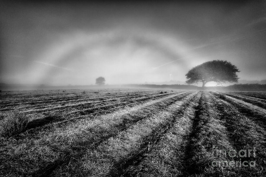 Fog Bow Photograph