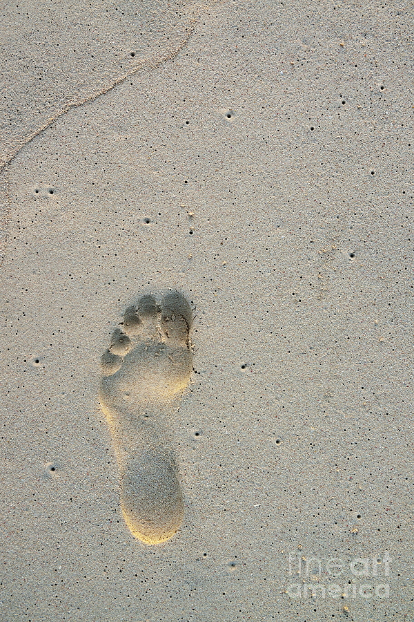 Footprint In Sand On Beach Photograph  - Footprint In Sand On Beach Fine Art Print