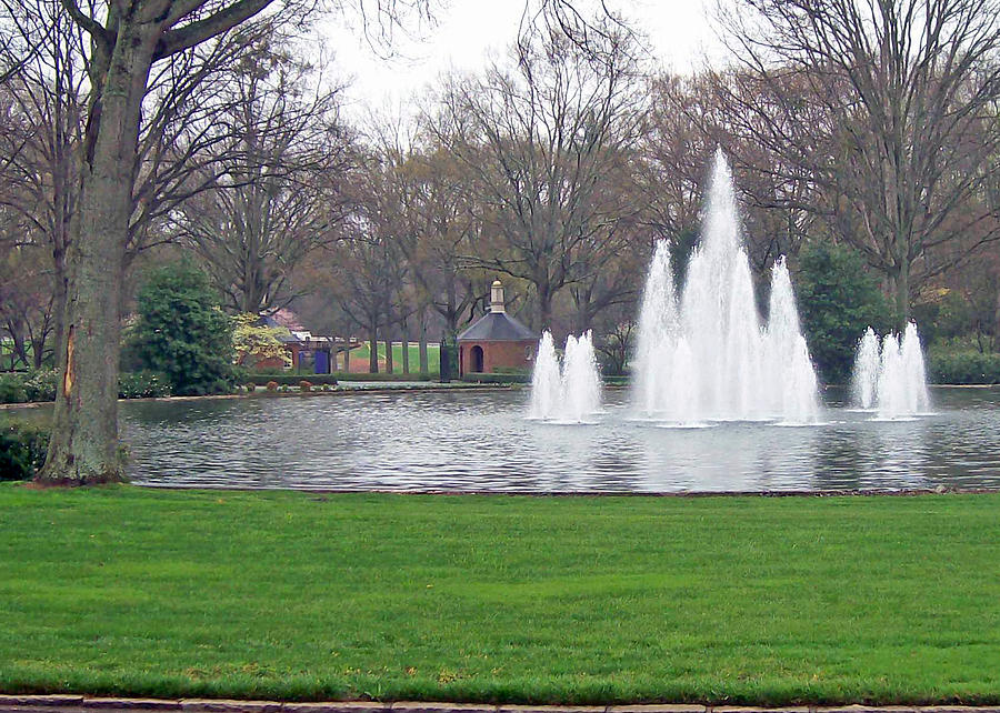 Furman Fountain Photograph  - Furman Fountain Fine Art Print