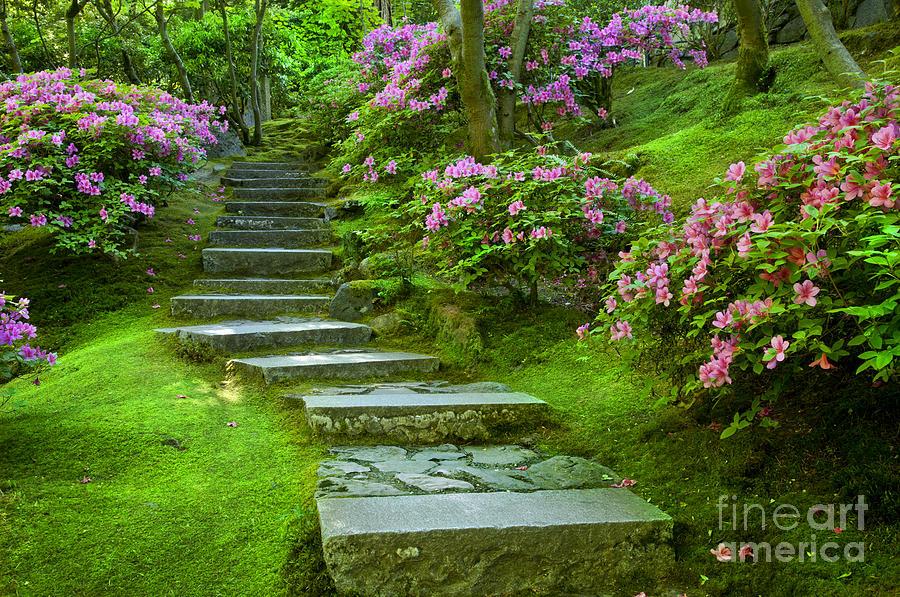 Garden pathway photograph by brian jannsen Pathway images