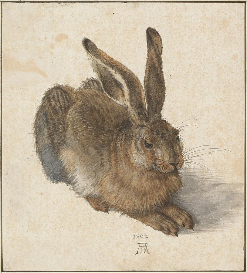 Young Hare Painting