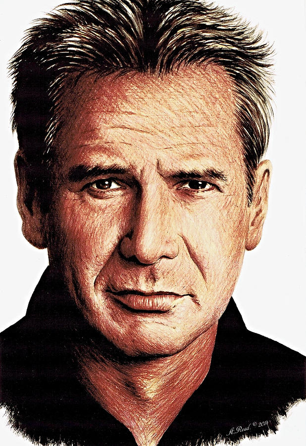 Harrison Ford Drawing  - Harrison Ford Fine Art Print