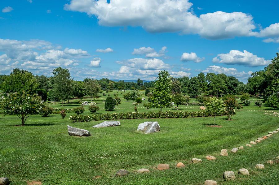 Harveys Garden Photograph