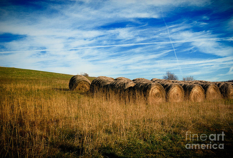 Hay Bales And Contrails Photograph