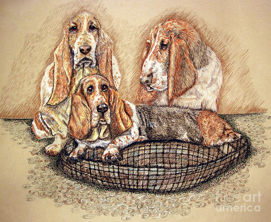 Hesser Puppies Drawing  - Hesser Puppies Fine Art Print