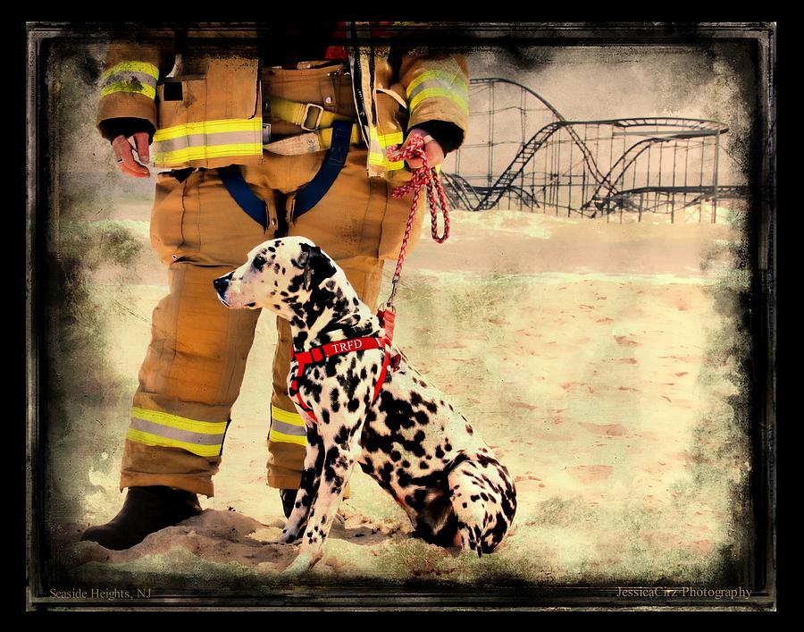 Hurricane Sandy Fireman And Dog Photograph  - Hurricane Sandy Fireman And Dog Fine Art Print