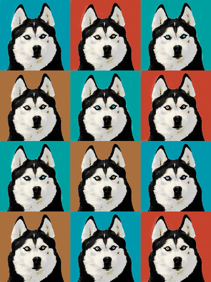 Husky Pop Art Digital Art