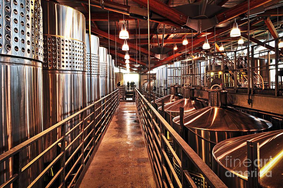 Inside Winery Photograph