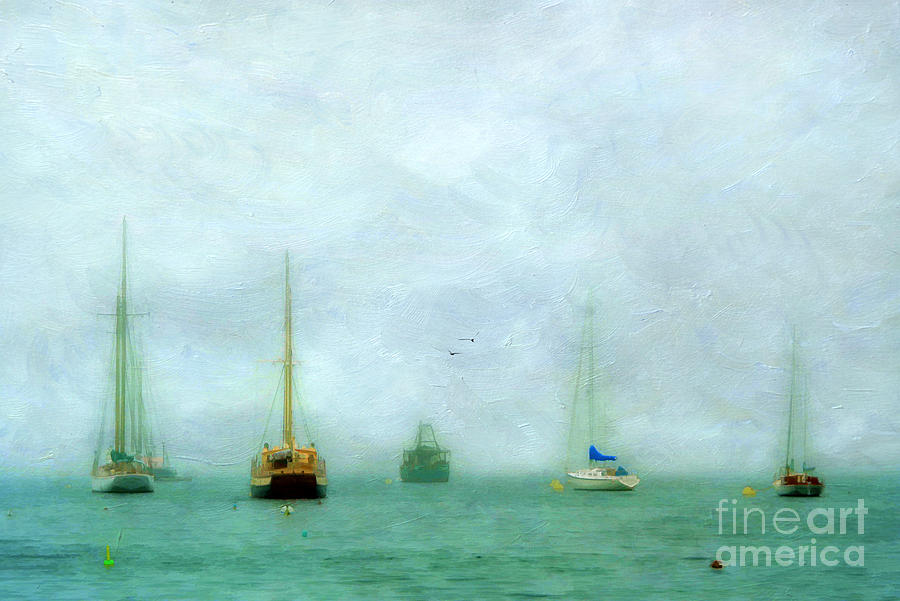 Into The Fog Photograph