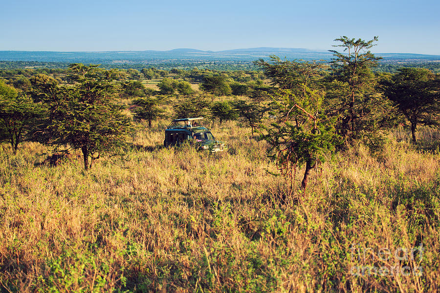 Jeep With Tourists On Safari In Serengeti. Tanzania. Africa. Photograph